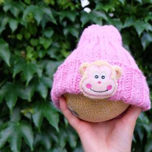 Pink-Monkey-Kind